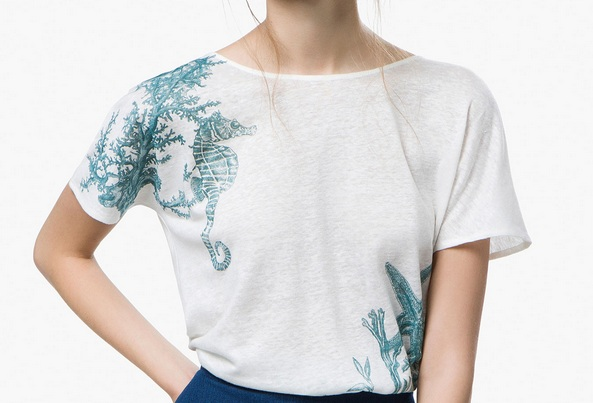 bluza massimo dutti